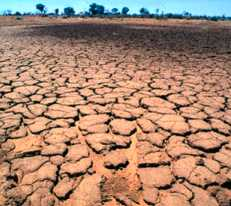 The tragedy of a drought-torn country.