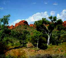 The splendour of Kings Canyon, Northern Territory