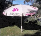 Best of Breed umbrella