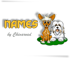 Dog Names by LowchensAustralia com